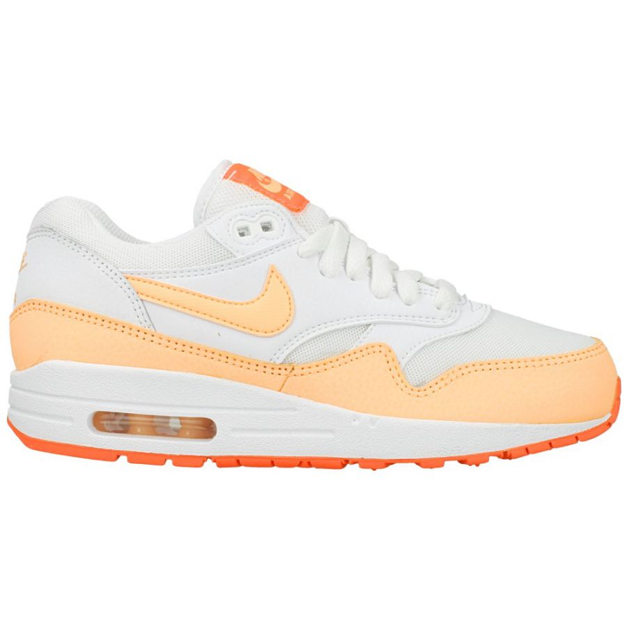 Nike Wmns Air Max 1 Essential 599820-114